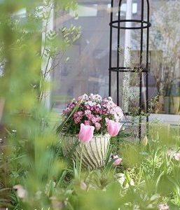 中庭は春満開です